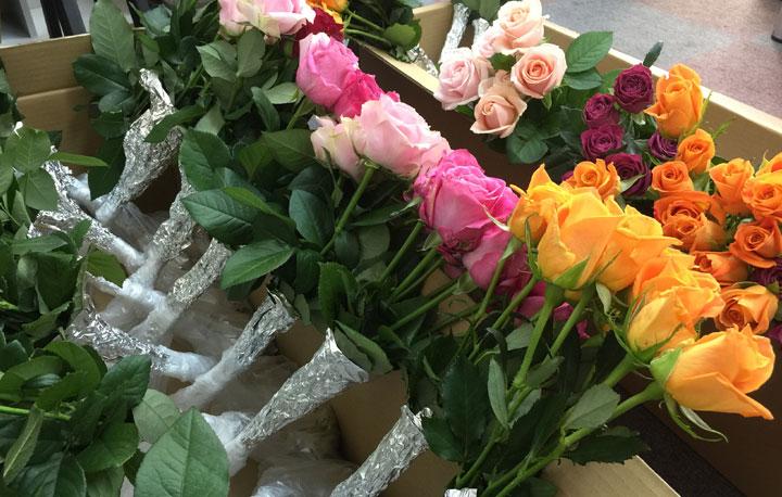 箱詰め前のバラ